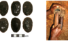 Article: Understanding variability in stone tool production